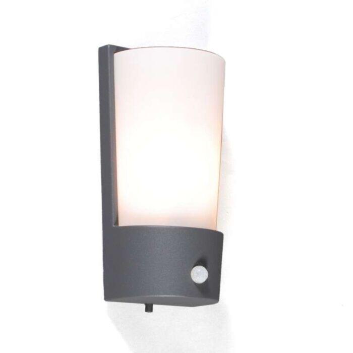 Udendørslampe-Laval-IR-grafit